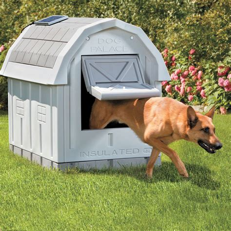 how to keep a dog house cool in the summer dog palace insulated dog house the green head