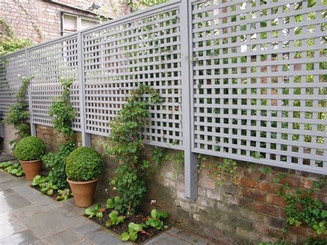 backyard privacy screens trellis creative uses for garden trellises greenery dwarf and