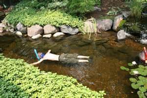 Rock Garden Pond Rock Garden Pond Artenzo