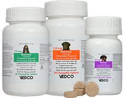 novox for dogs new product novox carprofen chewable tablets petmeds 174 pet health