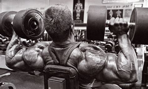 press on wallpaper 20 scary bodybuilding wallpapers bible