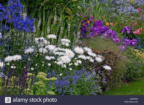 how to create a cottage garden border a colourful mixed flower border in a cottage garden stock