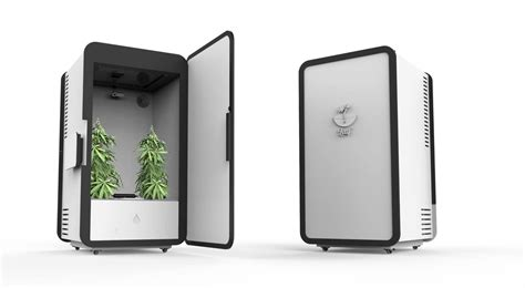 Build Your Own Virtual House the quot grow your own marijuana at home quot industry is booming