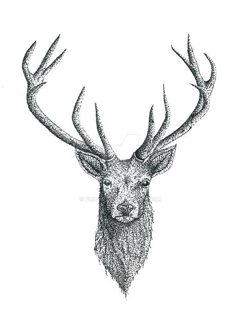 small deer tattoo designs deer design by pixiebmth on deviantart
