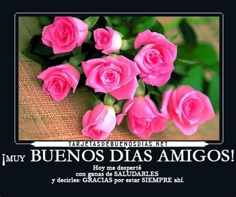 imagenes rosas muy hermosas hermosas im 225 genes de buenos d 237 as con rosas para todos