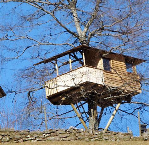 Baumhaus Zum Wohnen by Abenteuer Wohnen Der Traum Vom Eigenen Baumhaus Welt