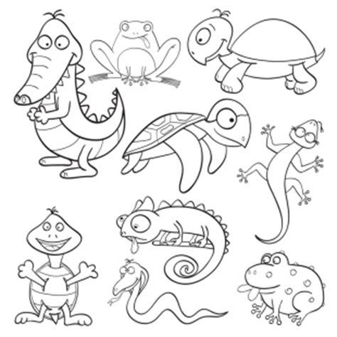 reptilien für zuhause kostenlose malvorlage tiere kostenlose malvorlage
