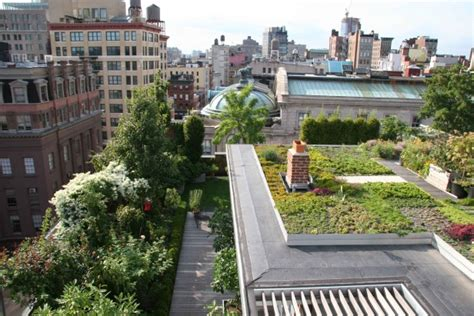 green roof design by spanish based firm on a architects rooftop garden porn to get you through winter grist