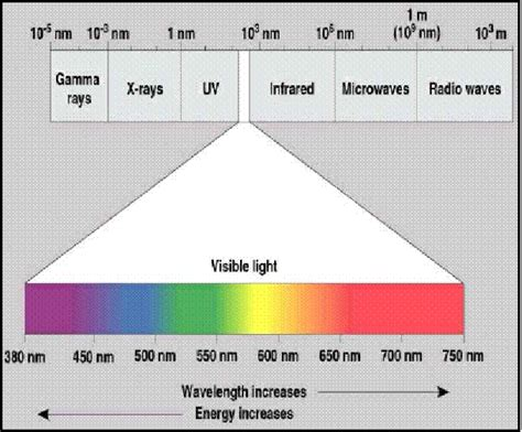 Wavelength Range Of Visible Light by Bgu Computational Vision Course Home Page