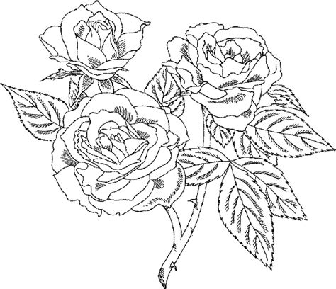coloring pages that are very detailed detailed animal coloring pages bestofcoloring com