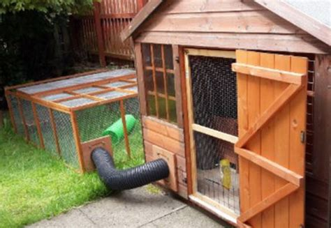 Big Bunny Hutches ideas the big rabbit hutch