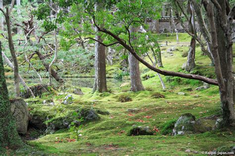 Moss Garden Kyoto by Saiho Ji The Sublime Moss Temple In Kyoto
