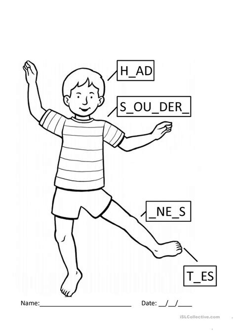 head shoulders knees and toes worksheet free esl