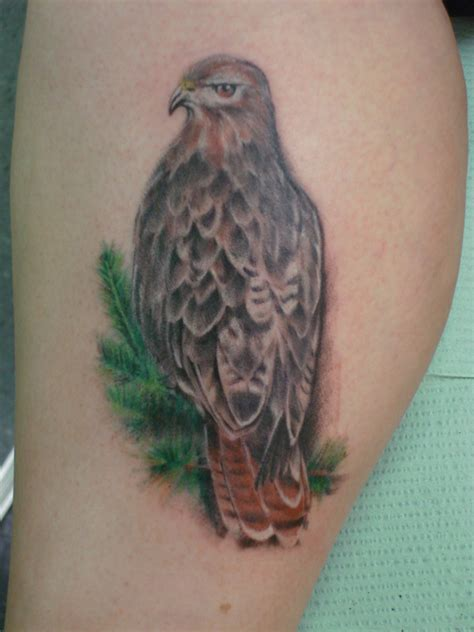 30 dramatic hawk tattoos ideas for men and women magment