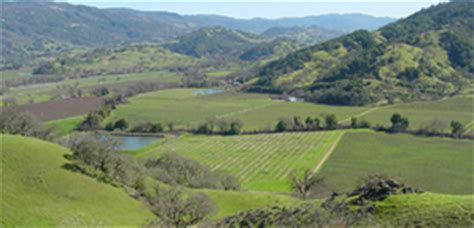 Mendocino County Records Related Keywords Suggestions For Mendocinocounty