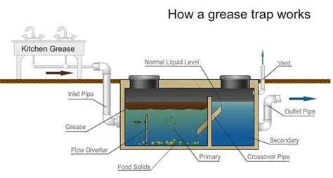 grease trap guide this infographic demonstrates how