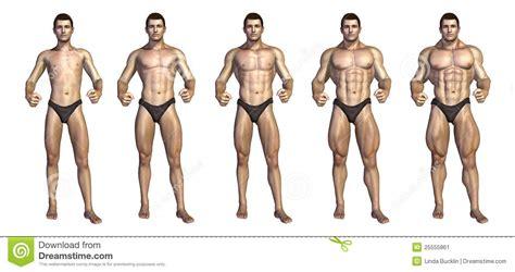 de geleidelijke transformatie van de bodybuilder stock illustratie illustratie bestaande uit
