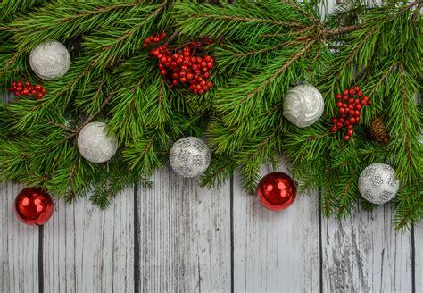 image of winters blessing christmas tree fotos gratis 225 rbol rama hojas perennes navidad abeto ramita decoraci 243 n navide 241 a