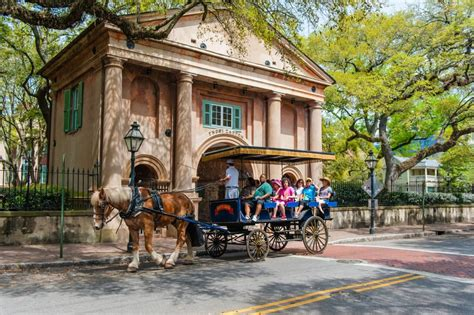 boat ride charleston caring for the charleston carriage horses things to do