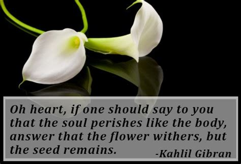 sweet comforting messages kahlil gibran quotes on grief and loss quotesgram