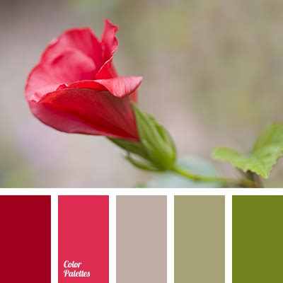 bright crimson color bright crimson color palette ideas