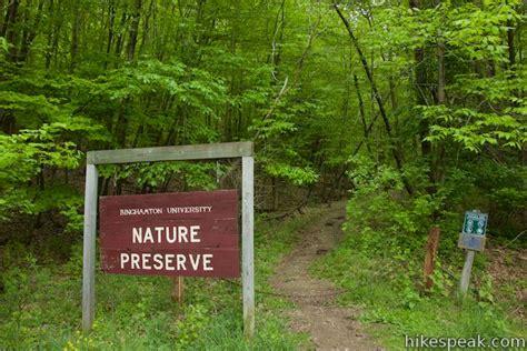 pond marsh trails binghamton university ny