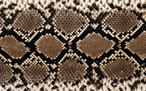 python pattern html snakes textures skin wallpaper 1920x1200 14237