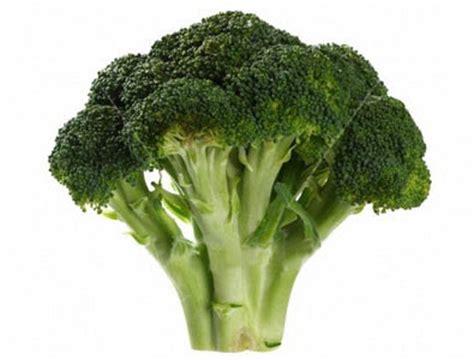 broccolo a testa fleggsisters italian pasta col broccolo