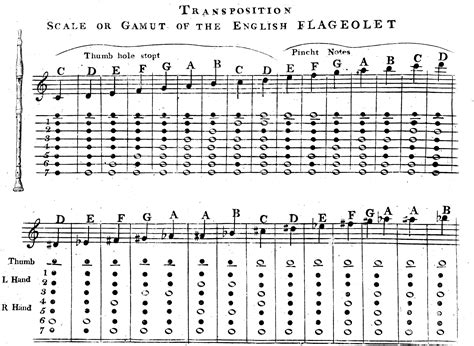 musical notes scale diagram william bainbridge s the and flageolet