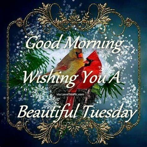 daily  image  teresa yarbrough good morning wishes happy tuesday morning