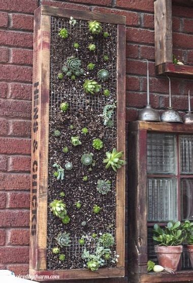 Vertical Garden Toronto Vertical Planter Awesome Diy Gardening Idea My