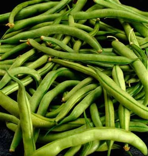 Types Of Garden Peas - are green beans and snow peas paleo