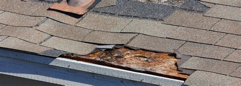 roofing repairs roof repair gainesville fl mcfall roofers