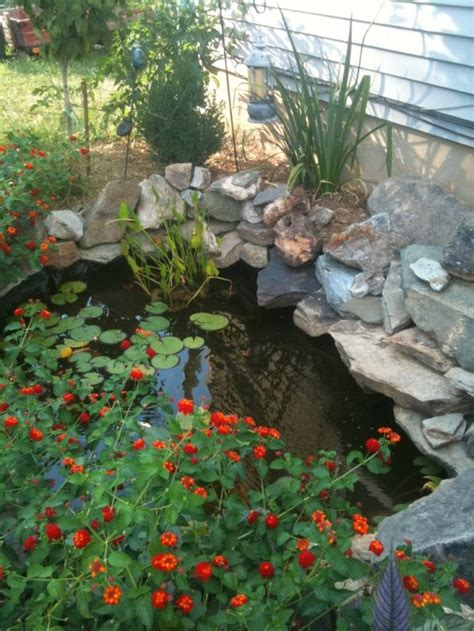 Backyard Bassin by Top 25 Awesome Backyard Pond Design Ideas Site For