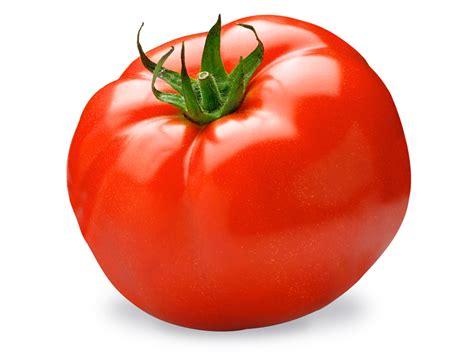 Läuse An Tomaten 5263 by Los Colores De La Huerta