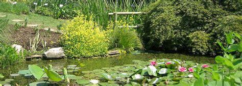 giardino botanico bergamo rete orti botanici della lombardia gli orti botanici di