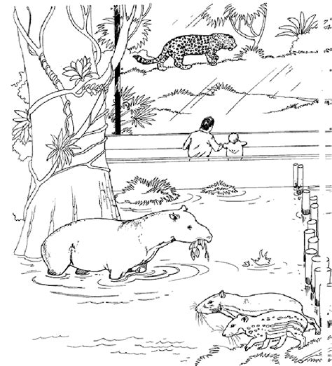 printable animal homes 86 coloring pictures of animals and their homes dog