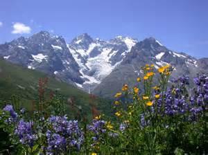 l evasion des sens le jardin botanique alpin du lautaret