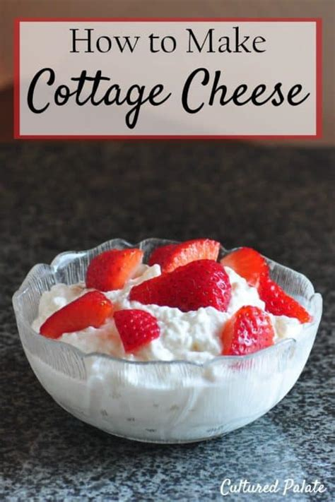 how to make cottage cheese how to make cottage cheese cottage cheese recipe