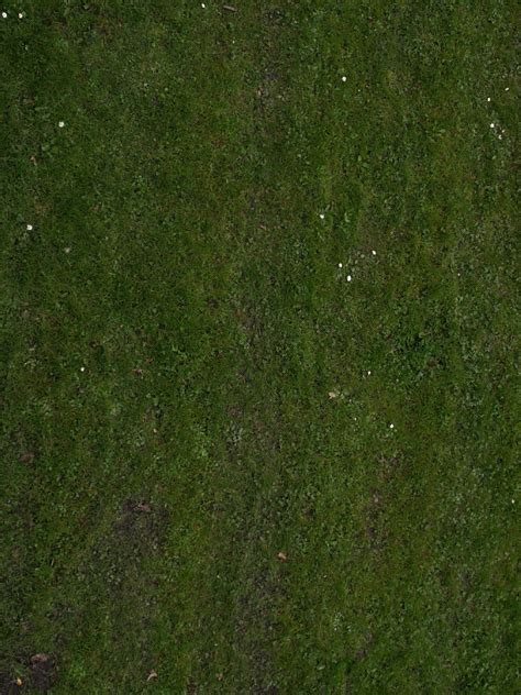 green nature ground texture photo gallery