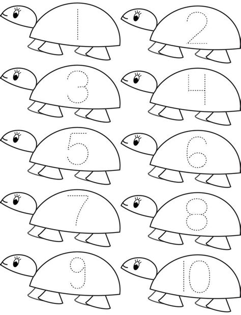 preschool coloring pages turtles pinterest the world s catalog of ideas