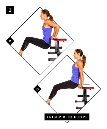 tricep bench dips tricep bench dips the only 3 moves you need for sexy
