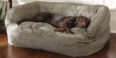 dog bed costco dog sofa bed costco refil sofa