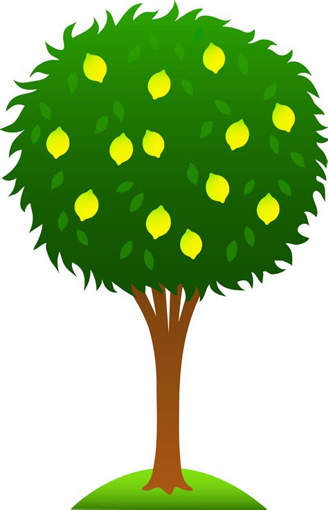 cute trees cute lemon tree free clip art