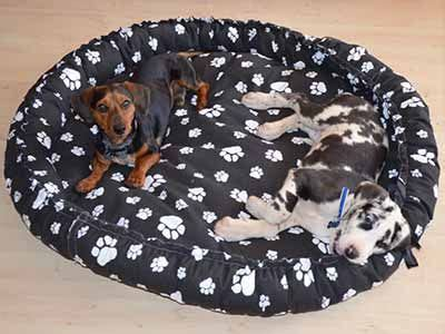 make your own dog bed 158 best dog beds for a rescue dogs images on pinterest