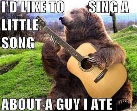 Bears Memes - amazing animal memes guitar playing bear funny quotes