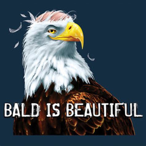 America Meme Eagle - merica eagle meme www imgkid com the image kid has it