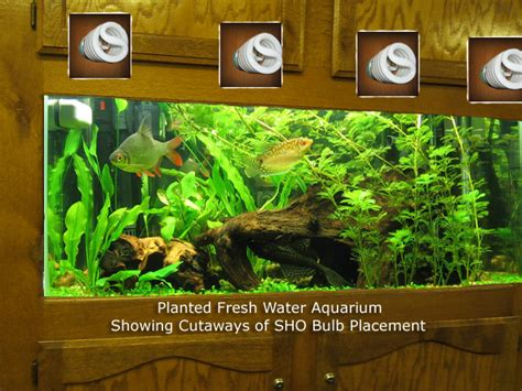 sho compact fluorescent aquarium hydroponics lights