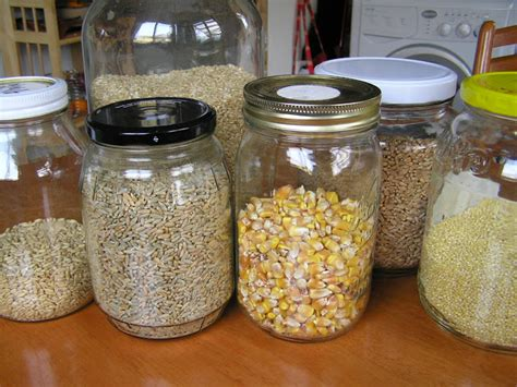 whole grains unprocessed grind your own flours from whole grains a unprocessed