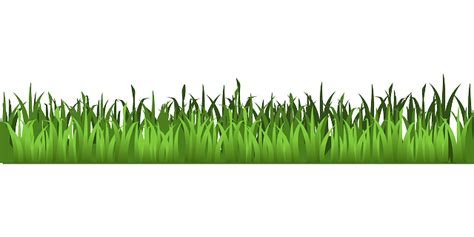 gambar vektor gratis rumput padang rumput hijau
